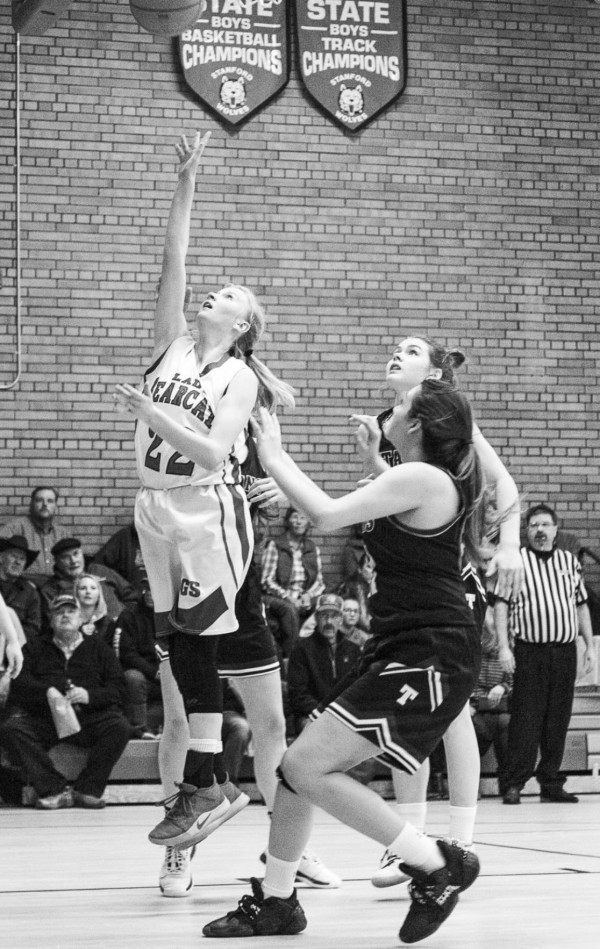 DGS Bearcat All-State selection Sydney Von Bergen goes for a layup during a game against Tri-City.